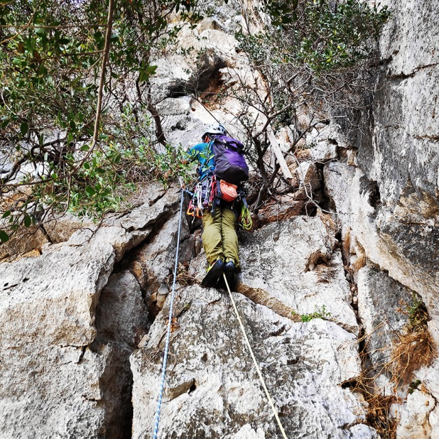 Climbing_Diaberis_Pothos_Profitis_Elias_Asini_163157_177