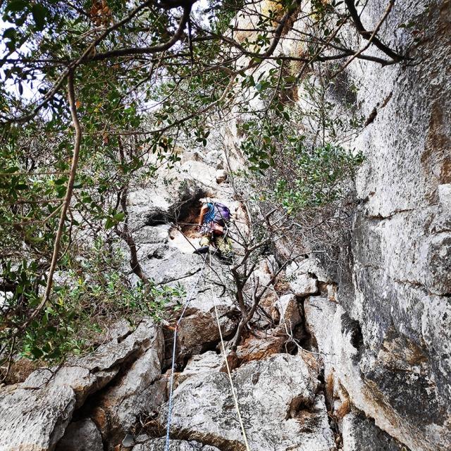 Climbing_Diaberis_Pothos_Profitis_Elias_Asini_163217_024
