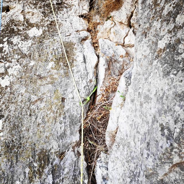 Climbing_Diaberis_Pothos_Profitis_Elias_Asini_163241_877