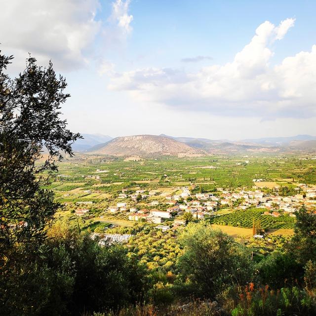 Climbing_Diaberis_Pothos_Profitis_Elias_Asini_163301_931