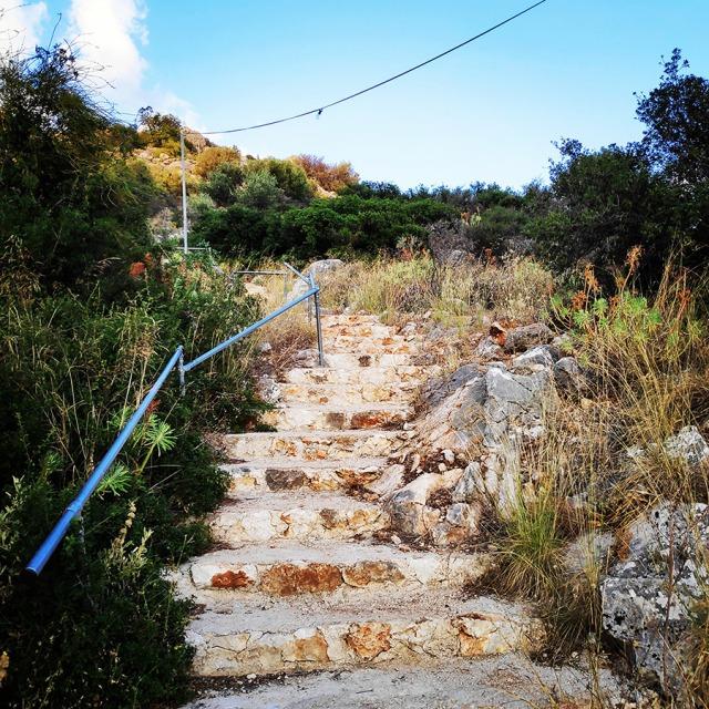 Climbing_Diaberis_Pothos_Profitis_Elias_Asini_163424_013