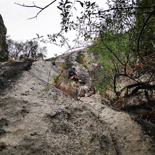 Climbing_Diaberis_Pothos_Profitis_Elias_Asini_225524_918