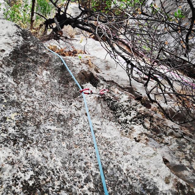 Climbing_Diaberis_Pothos_Profitis_Elias_Asini_225729_680