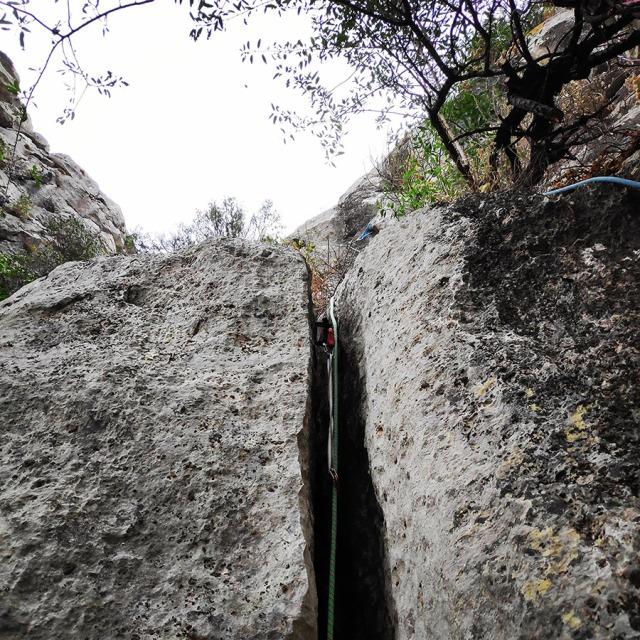 Climbing_Diaberis_Pothos_Profitis_Elias_Asini_225750_874