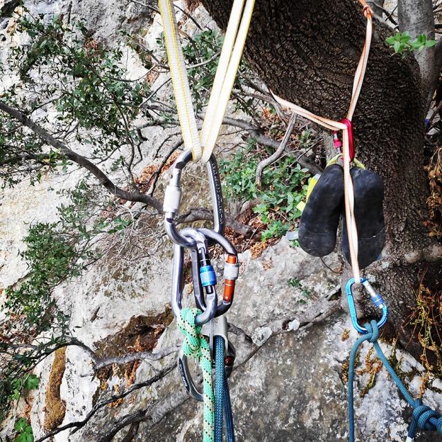 Climbing_Diaberis_Pothos_Profitis_Elias_Asini_225841_910