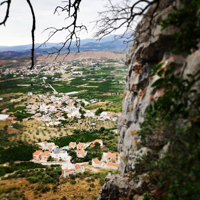 Climbing_Diaberis_Pothos_Profitis_Elias_Asini_225948_177