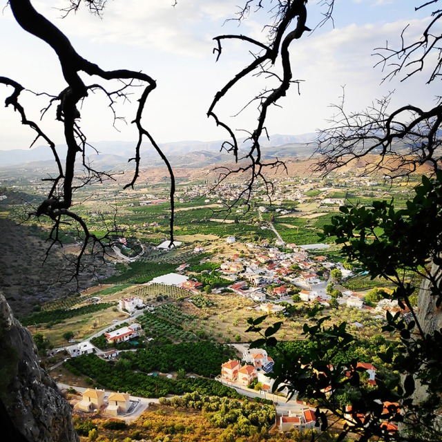 Climbing_Diaberis_Pothos_Profitis_Elias_Asini_230145_216
