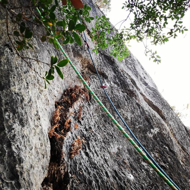 Climbing_Diaberis_Pothos_Profitis_Elias_Asini_230220_125