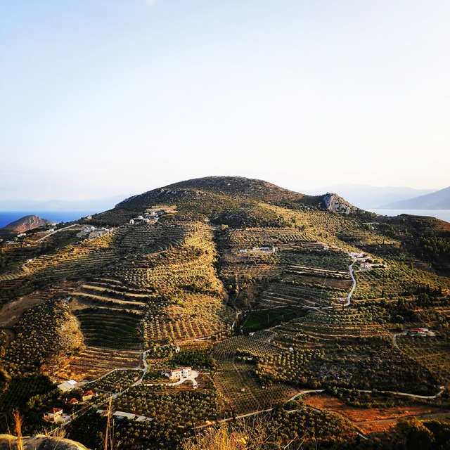 Climbing_Diaberis_Pothos_Profitis_Elias_Asini_230422_345