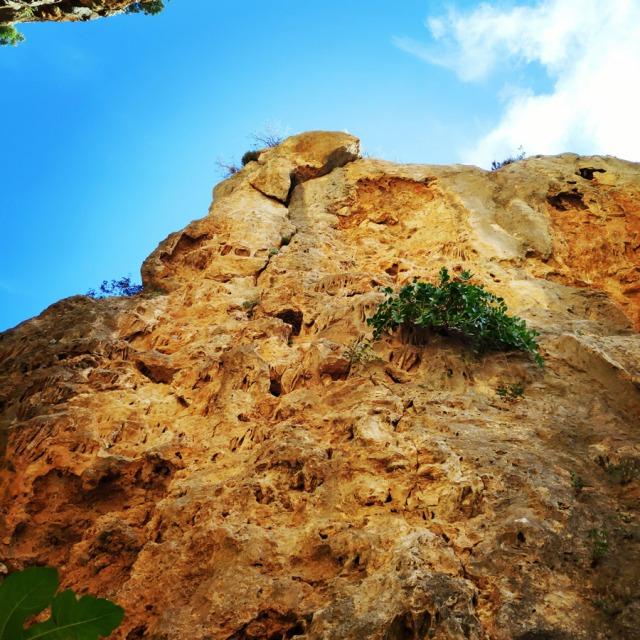 Climbing_Leonidio_Mini_Canyon_081004_762