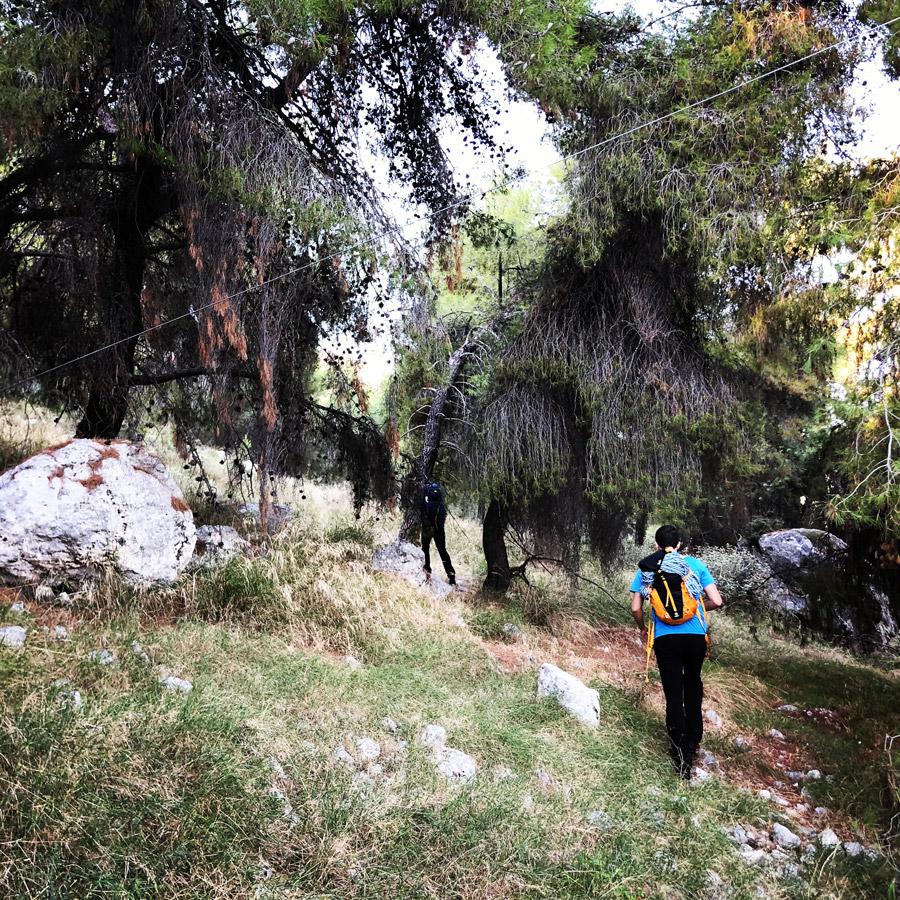 Multipitch_climbing_Tsirio_To_Proto_Onia_mountain_072000_379