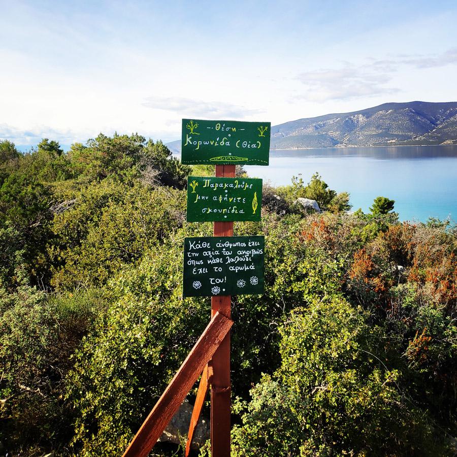 Hiking_Kilada_Ermionida_Patimas_Park_164417_012
