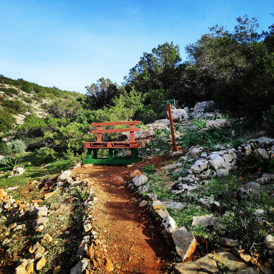 Hiking_Kilada_Ermionida_Patimas_Park_165142_881