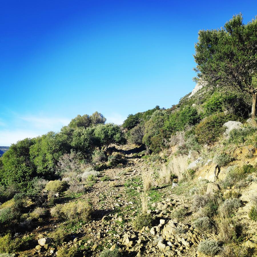 Climbing_South-East_Ridge_Ortholithi_Long_Run_160638_413