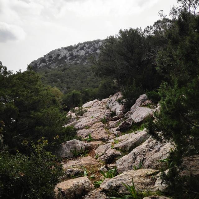 Climbing_Thermisia_Lagoon_Lizard_Route_163044_909