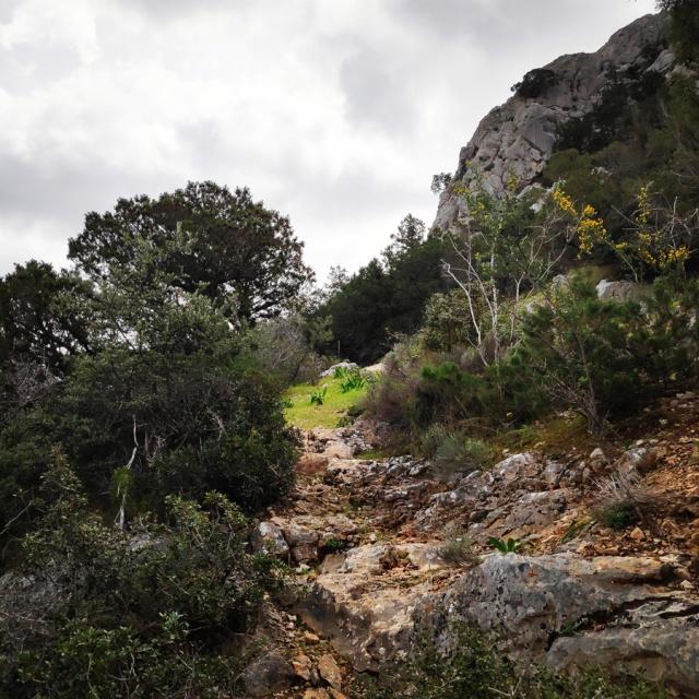 Climbing_Thermisia_Lagoon_Lizard_Route_163146_778