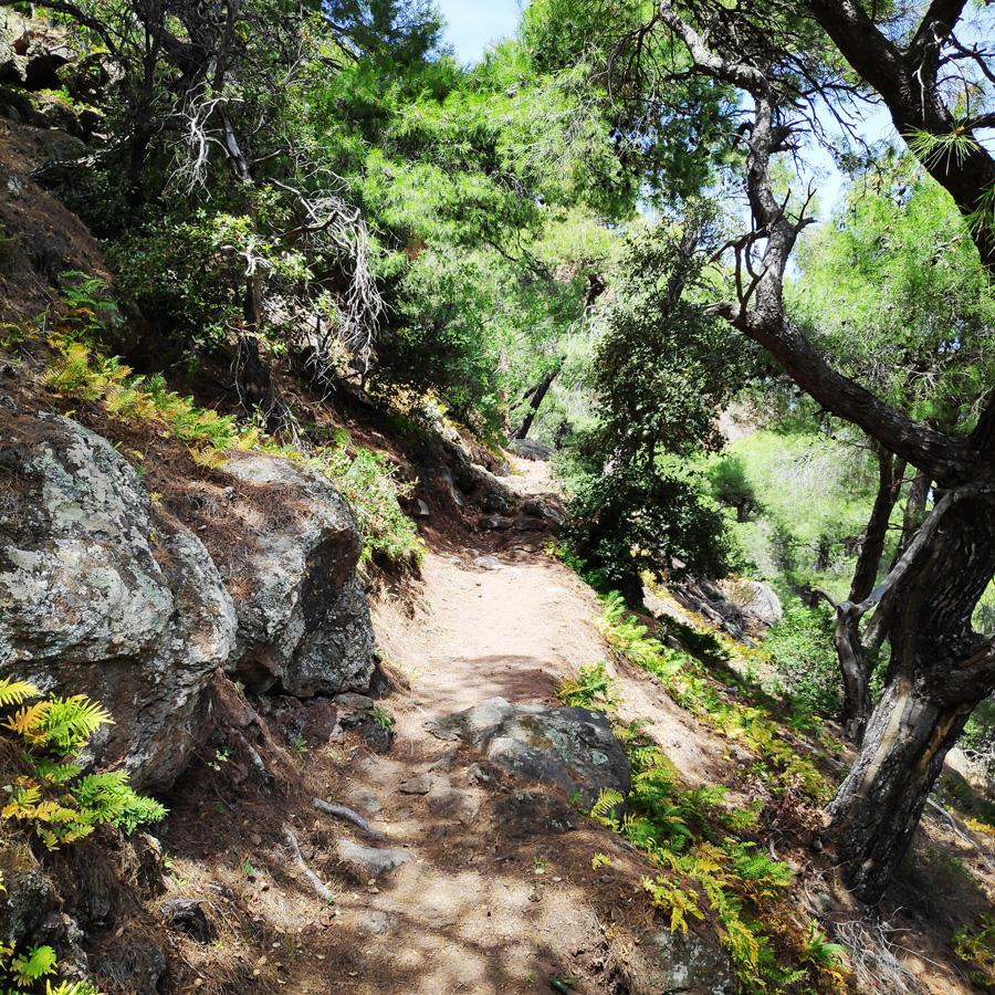 Hiking_Methana_Volcano_150147_788