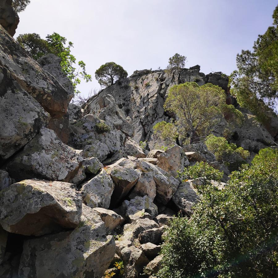 Hiking_Methana_Volcano_150652_194