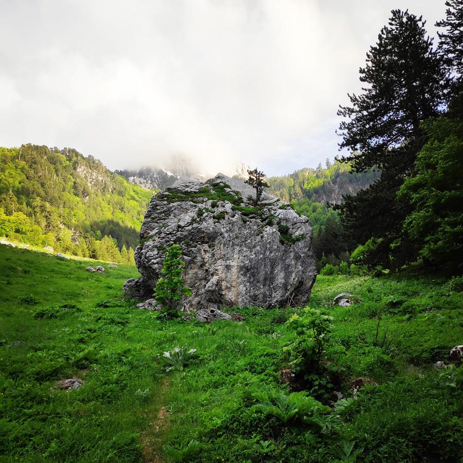 Mount_Tymfi_Pindos_North_Side_Thru-Hike_Part1_Konitsa_Moni_Stomiou_Sadi_Mygas_161529_106
