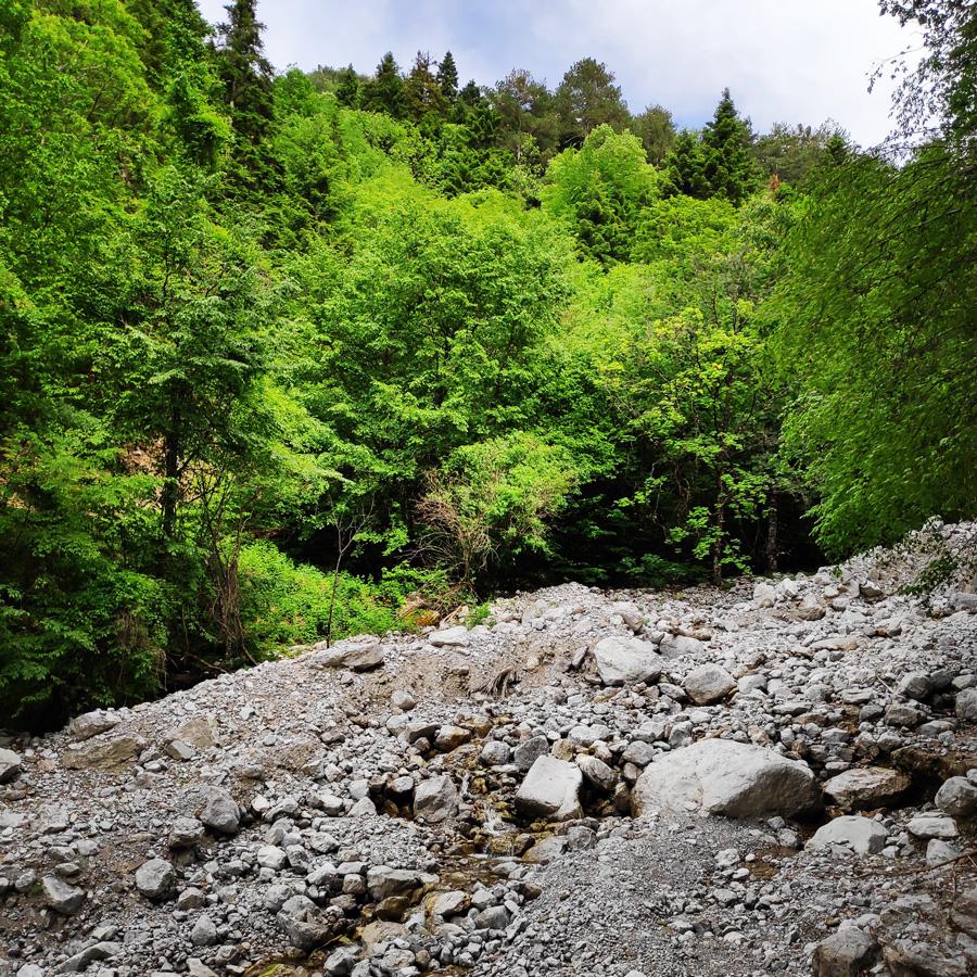 Mount_Tymfi_Pindos_North_Side_Thru-Hike_Part1_Konitsa_Moni_Stomiou_Sadi_Mygas_161646_900