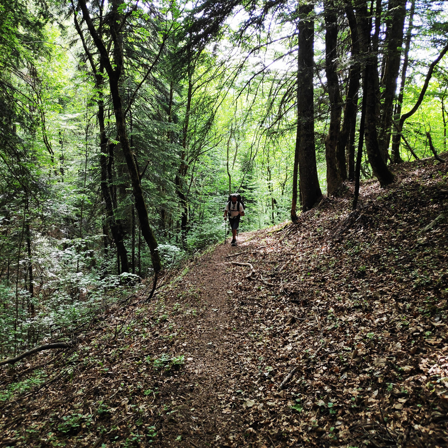 Mount_Tymfi_Pindos_North_Side_Thru-Hike_Part1_Konitsa_Moni_Stomiou_Sadi_Mygas_161722_522
