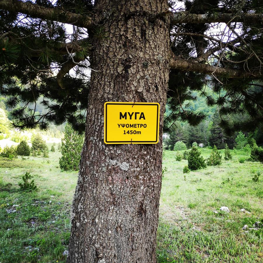 Mount_Tymfi_Pindos_North_Side_Thru-Hike_Part1_Konitsa_Moni_Stomiou_Sadi_Mygas_161814_446