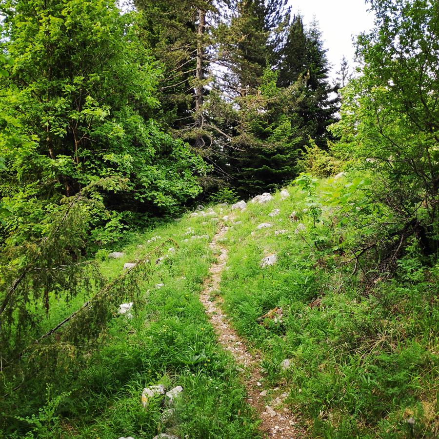 Mount_Tymfi_Pindos_North_Side_Thru-Hike_Part1_Konitsa_Moni_Stomiou_Sadi_Mygas_162543_535