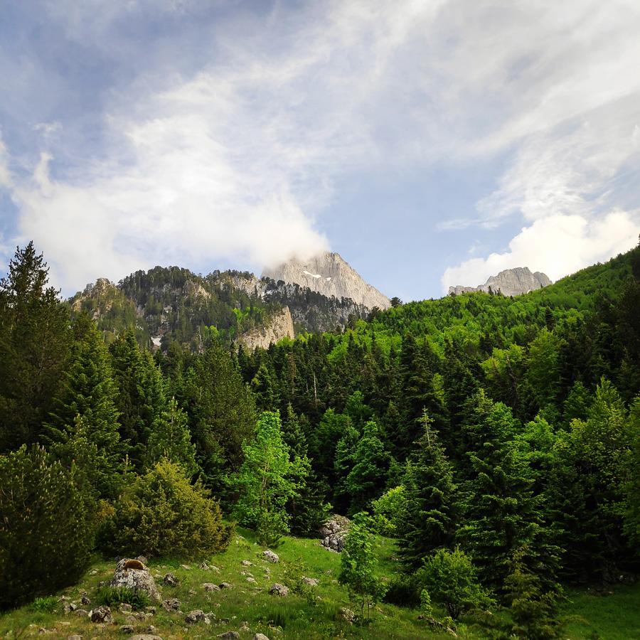 Mount_Tymfi_Pindos_North_Side_Thru-Hike_Part1_Konitsa_Moni_Stomiou_Sadi_Mygas_165353_642