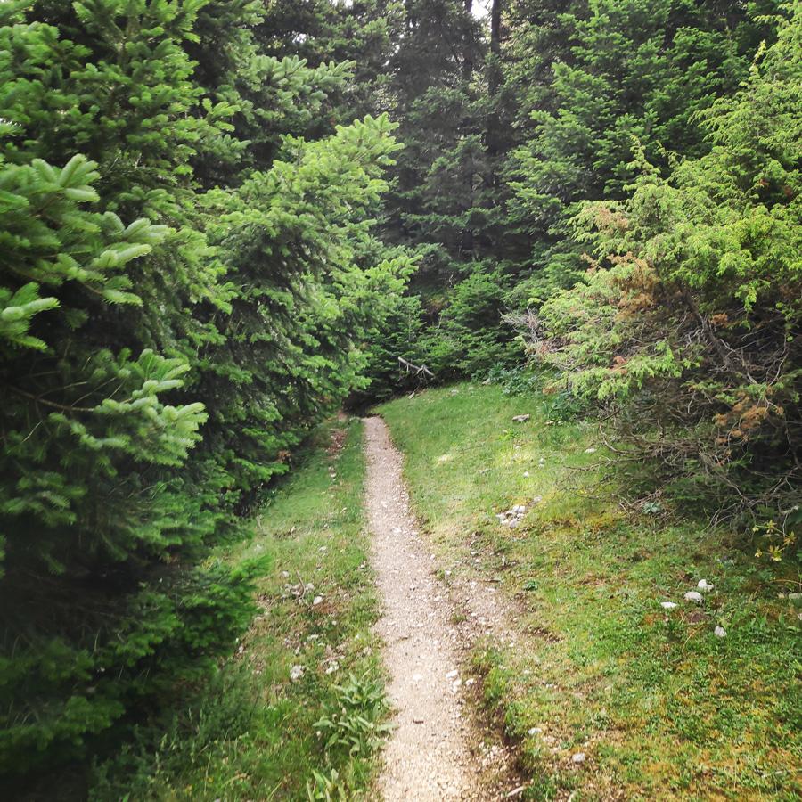 Hiking_in_Tzoumerka_Athamanika_Pramanta_Kefalovriso_Waterafall_Melissourgoi_184629_858