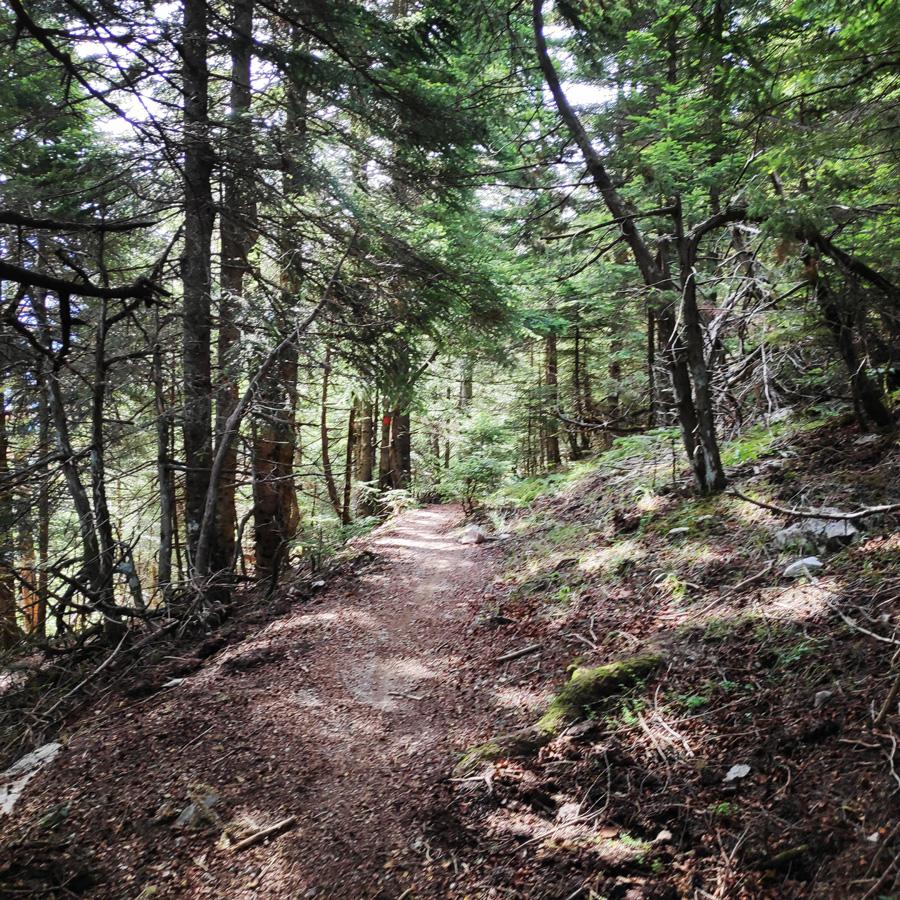 Hiking_in_Tzoumerka_Athamanika_Pramanta_Kefalovriso_Waterafall_Melissourgoi_184709_330