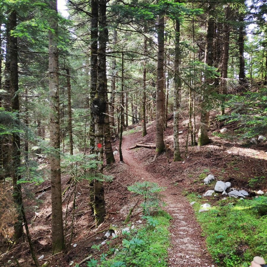 Hiking_in_Tzoumerka_Athamanika_Pramanta_Kefalovriso_Waterafall_Melissourgoi_184834_647