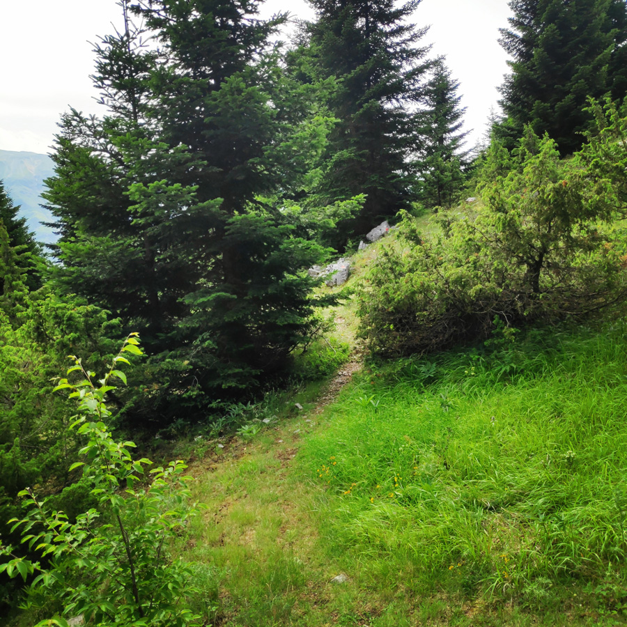 Hiking_in_Tzoumerka_Athamanika_Pramanta_Kefalovriso_Waterafall_Melissourgoi_191404_307