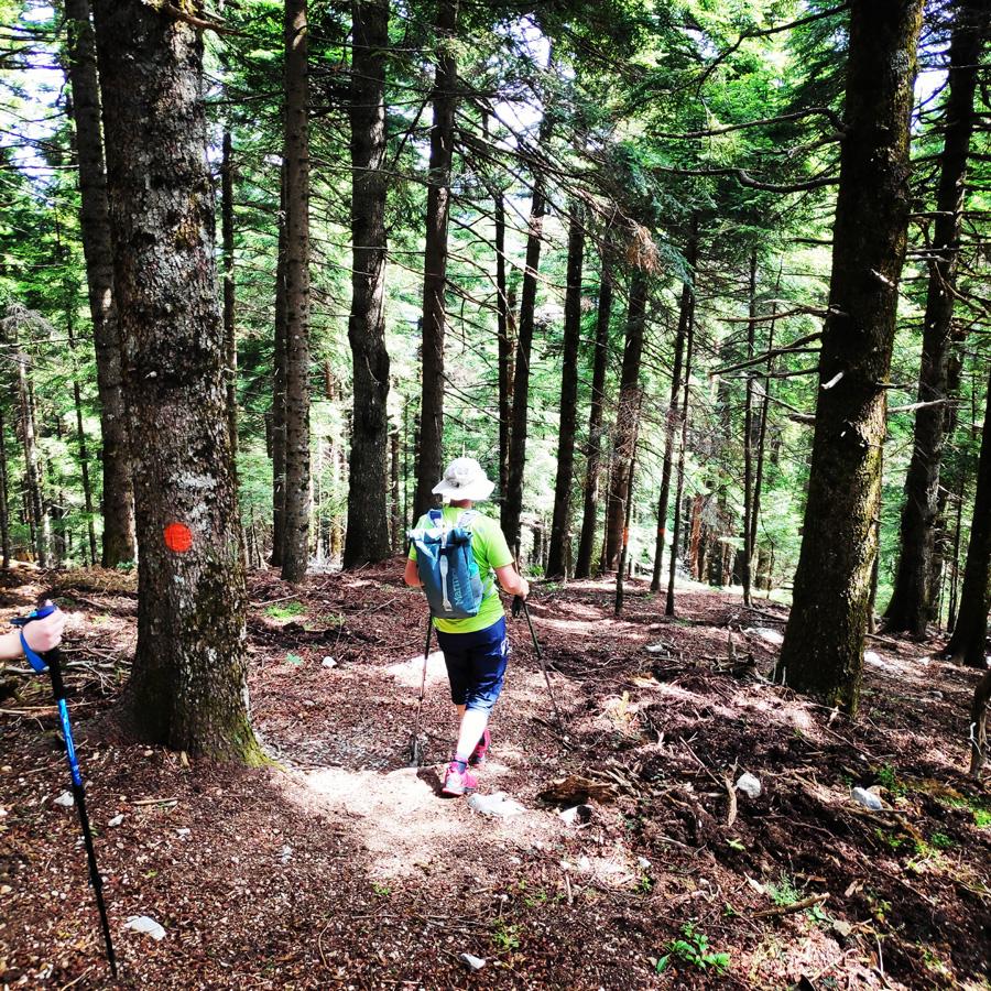 Hiking_in_Tzoumerka_Athamanika_Pramanta_Kefalovriso_Waterafall_Melissourgoi_191903_250