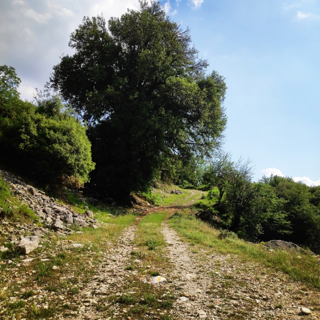 Hiking_in_Tzoumerka_Athamanika_Waterafalls_064812_494