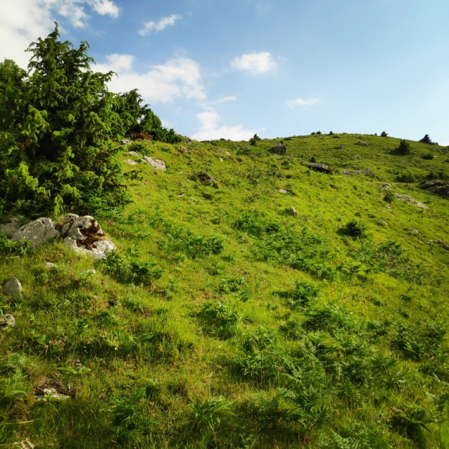 Hiking_in_Tzoumerka_Athamanika_Waterafalls_070019_289