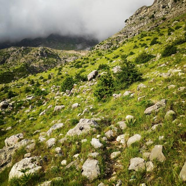 Hiking_in_Tzoumerka_Athamanika_Waterafalls_070524_292