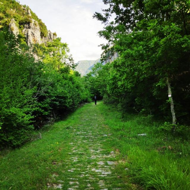 Hiking_Zagori_Villages_Bridges_Zagorochoria_212559_196