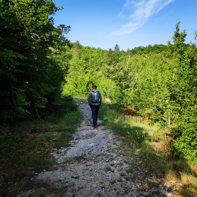Hiking_Zagori_Villages_Bridges_Zagorochoria_212955_693