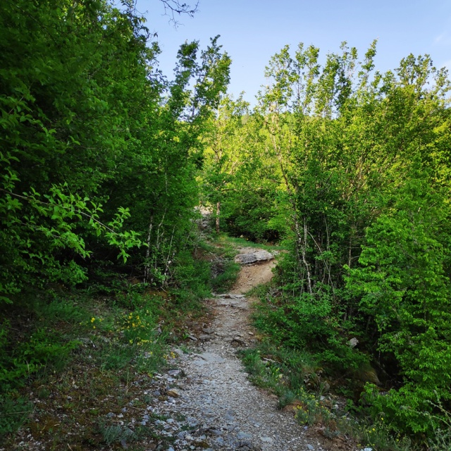 Hiking_Zagori_Villages_Bridges_Zagorochoria_213009_173