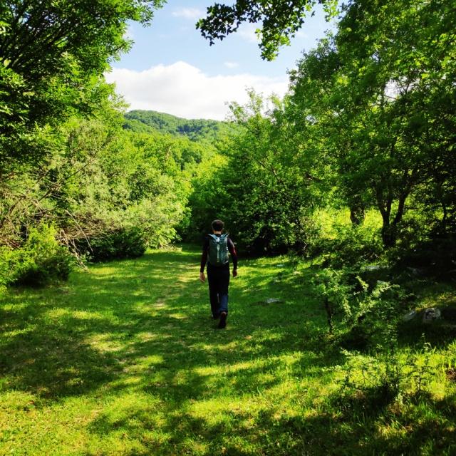 Hiking_Zagori_Villages_Bridges_Zagorochoria_213316_973