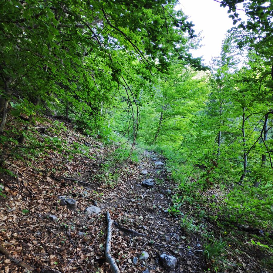Mount_Tymfi_Pindos_North_Side_Thru-Hike_Part2_Sadi_Migas_Karteros_Pass_Astraka_Refuge_084126_045
