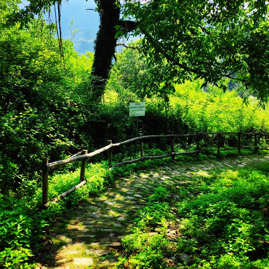 Hiking_Balta_di_Stringa_Iliochori_Tymfi_Pindos_092529_330-copy