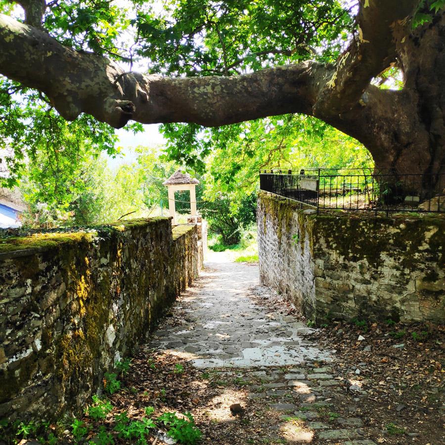 Hiking_Balta_di_Stringa_Iliochori_Tymfi_Pindos_092801_833-copy